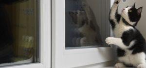 ventanas-practicables-1